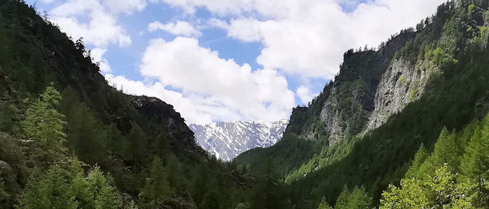 Val Pellice